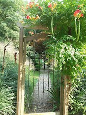 MariaH-garden_gate-th